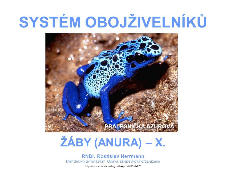 ZDROJE – ELEKTRONICKÉ DOKUMENTY Dendrobates azurrus - Pralesnička azurová.