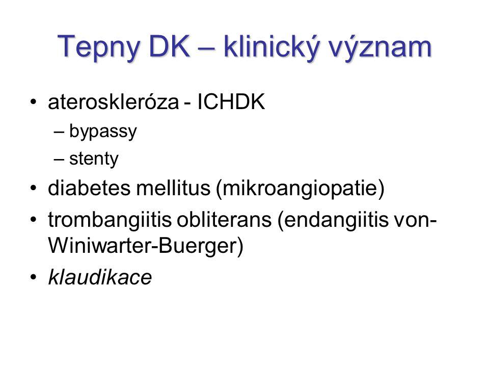 Tepny DK – klinický význam ateroskleróza - ICHDK –bypassy –stenty diabetes mellitus (mikroangiopatie) trombangiitis obliterans (endangiitis von- Winiw