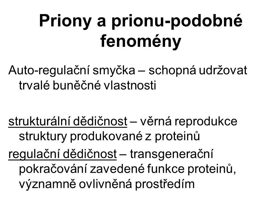 Priony a prionu-podobné fenomény Auto-regulační smyčka – schopná udržovat trvalé buněčné vlastnosti strukturální dědičnost – věrná reprodukce struktur