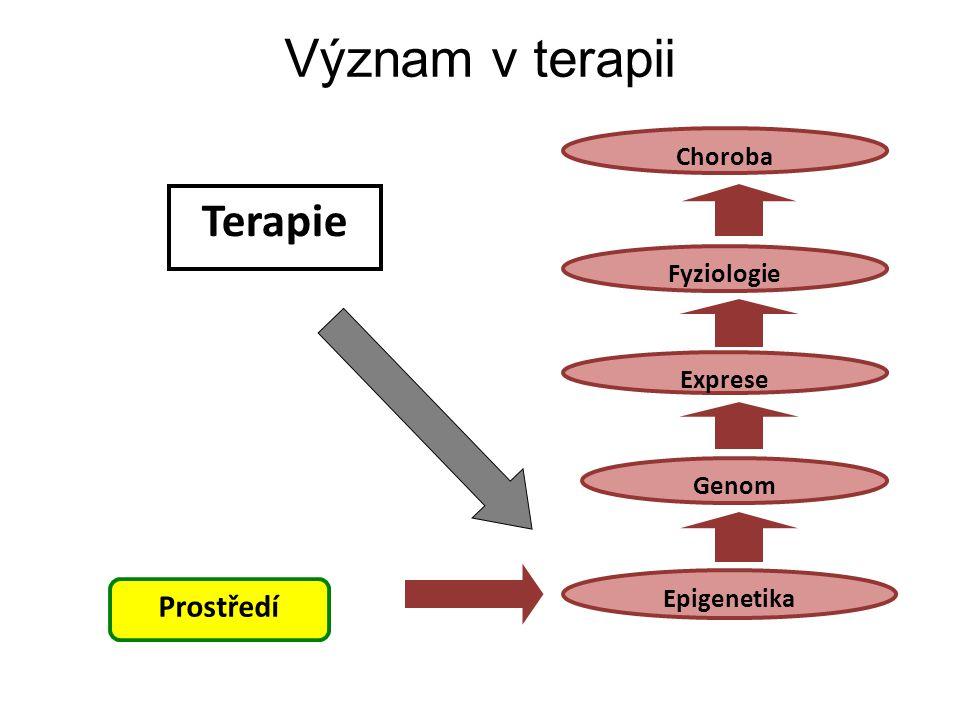 Epigenetika Prostředí Exprese Genom Fyziologie Choroba Terapie Význam v terapii