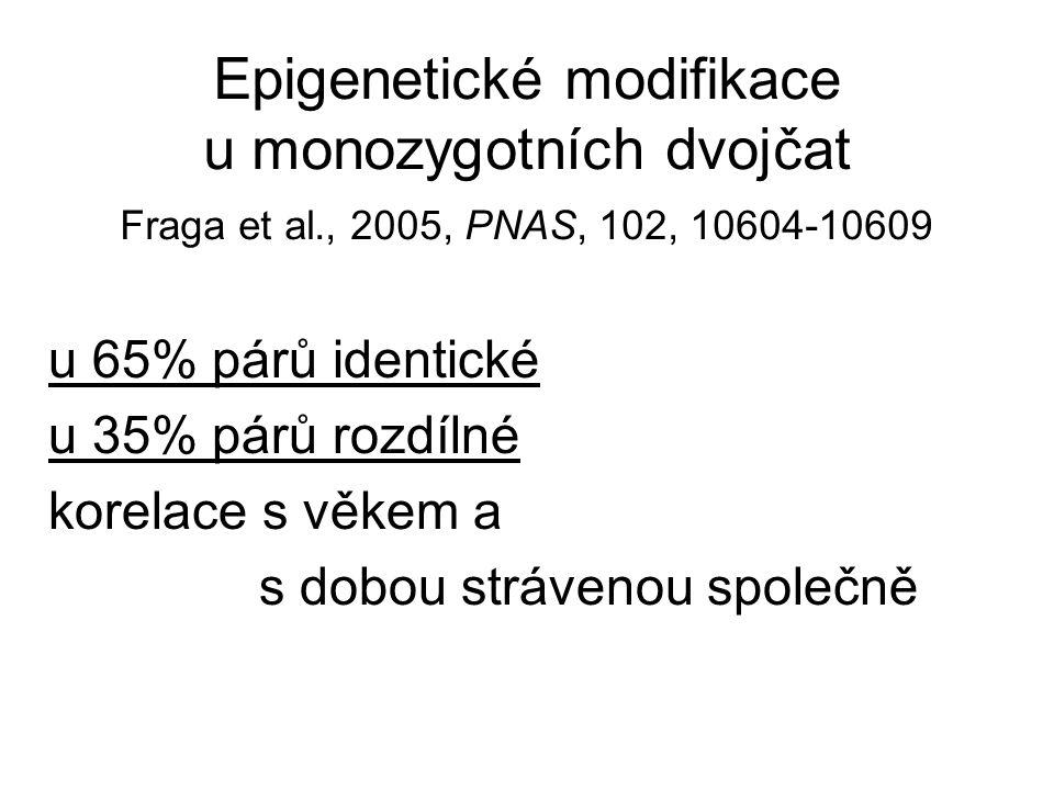 Epigenetické modifikace u monozygotních dvojčat Fraga et al., 2005, PNAS, 102, 10604-10609 u 65% párů identické u 35% párů rozdílné korelace s věkem a