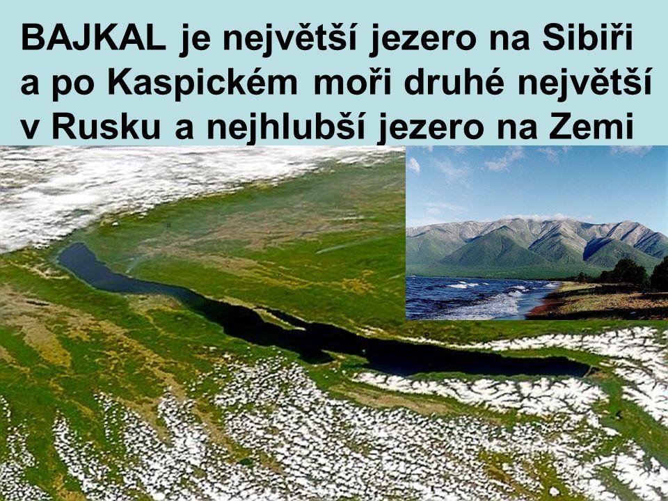 BAJKAL je největší jezero na Sibiři a po Kaspickém moři druhé největší v Rusku a nejhlubší jezero na Zemi