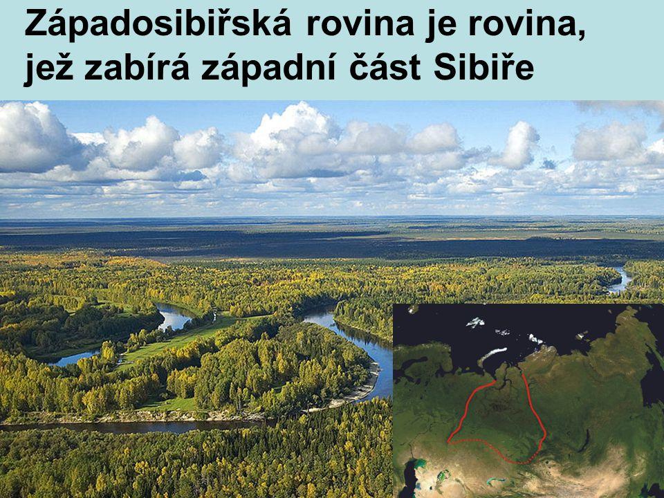 Poloostrov Kamčatka je zde 29 činných sopek, z nichž nejvyšší je Ključevskaja, vysoká 4750 mn.m.