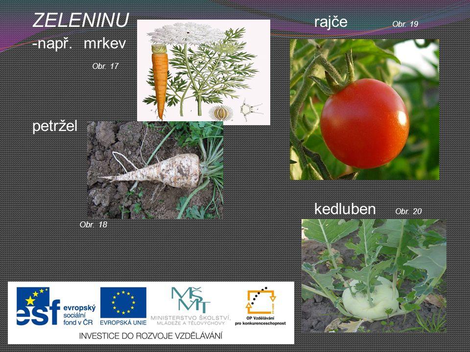 ZELENINU rajče Obr. 19 -např. mrkev Obr. 17 petržel kedluben Obr. 20 Obr. 18