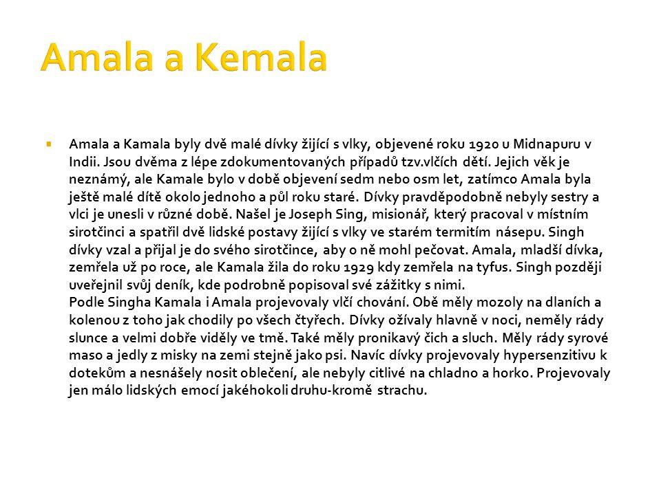  Amala a Kamala byly dvě malé dívky žijící s vlky, objevené roku 1920 u Midnapuru v Indii. Jsou dvěma z lépe zdokumentovaných případů tzv.vlčích dětí