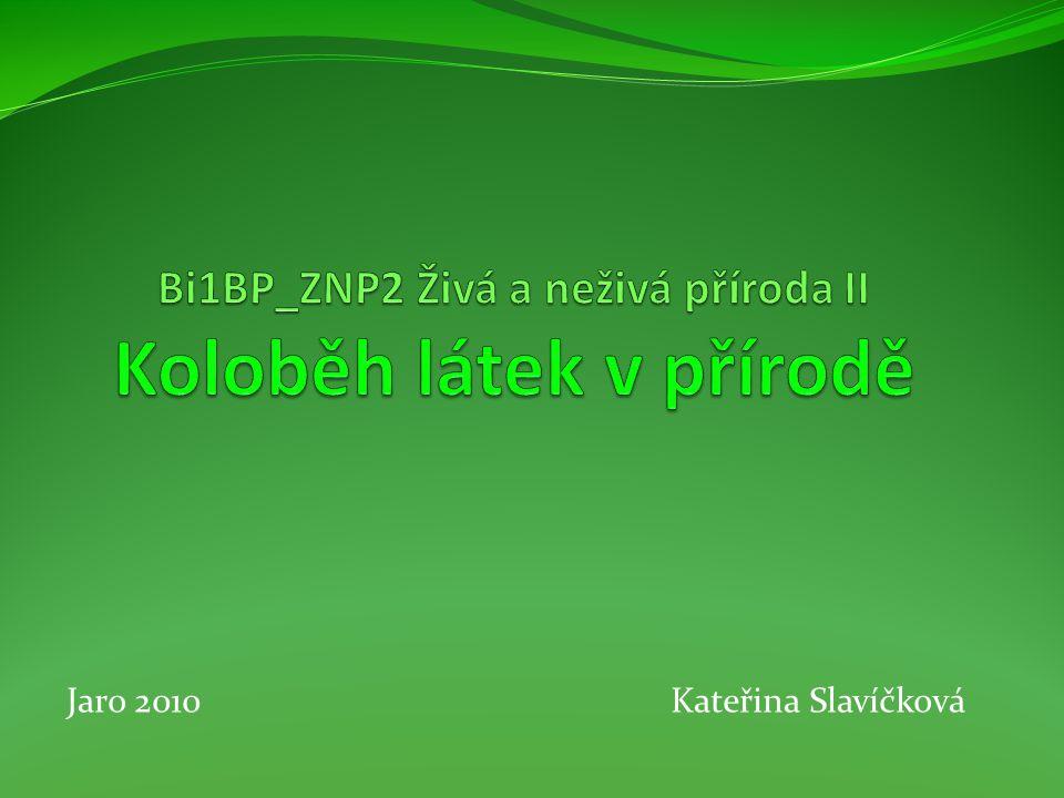 Jaro 2010 Kateřina Slavíčková