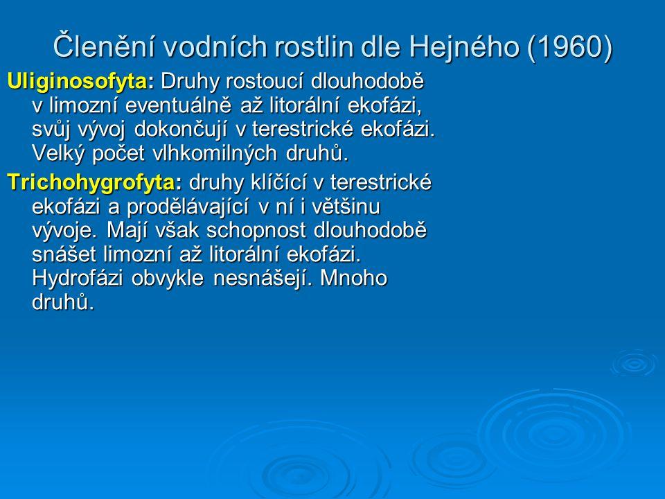 Členění vodních rostlin dle Hejného (1960) Uliginosofyta: Druhy rostoucí dlouhodobě v limozní eventuálně až litorální ekofázi, svůj vývoj dokončují v terestrické ekofázi.