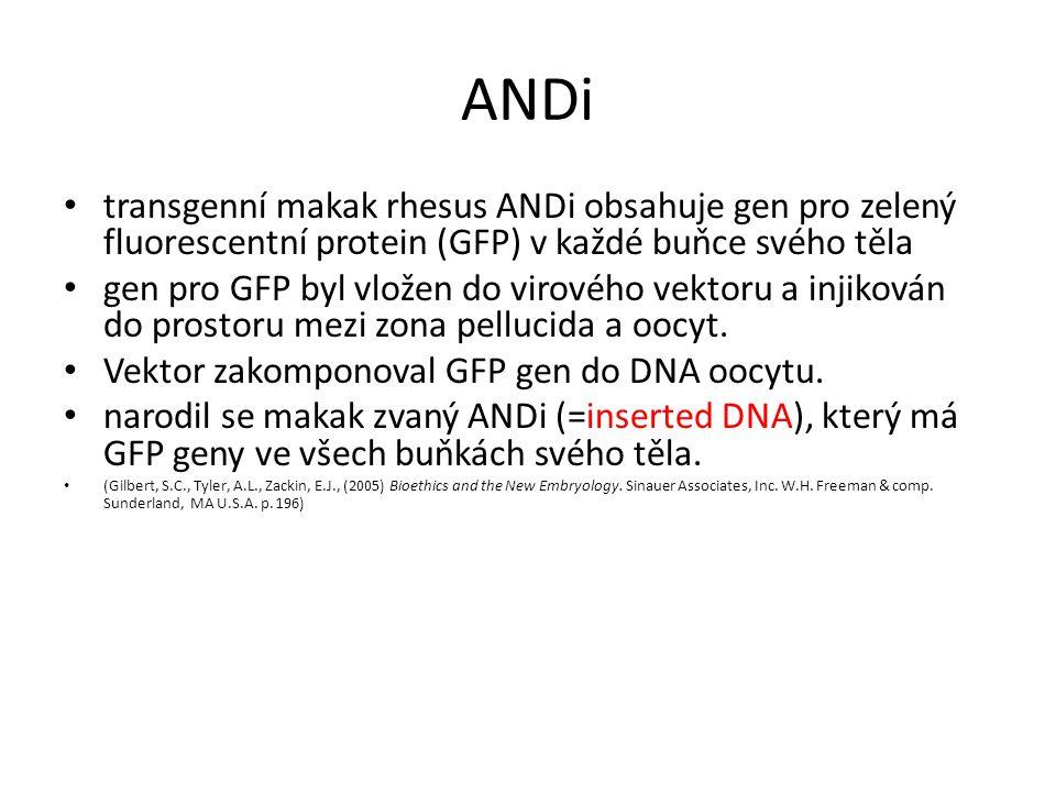 transgenní makak rhesus ANDi obsahuje gen pro zelený fluorescentní protein (GFP) v každé buňce svého těla gen pro GFP byl vložen do virového vektoru a