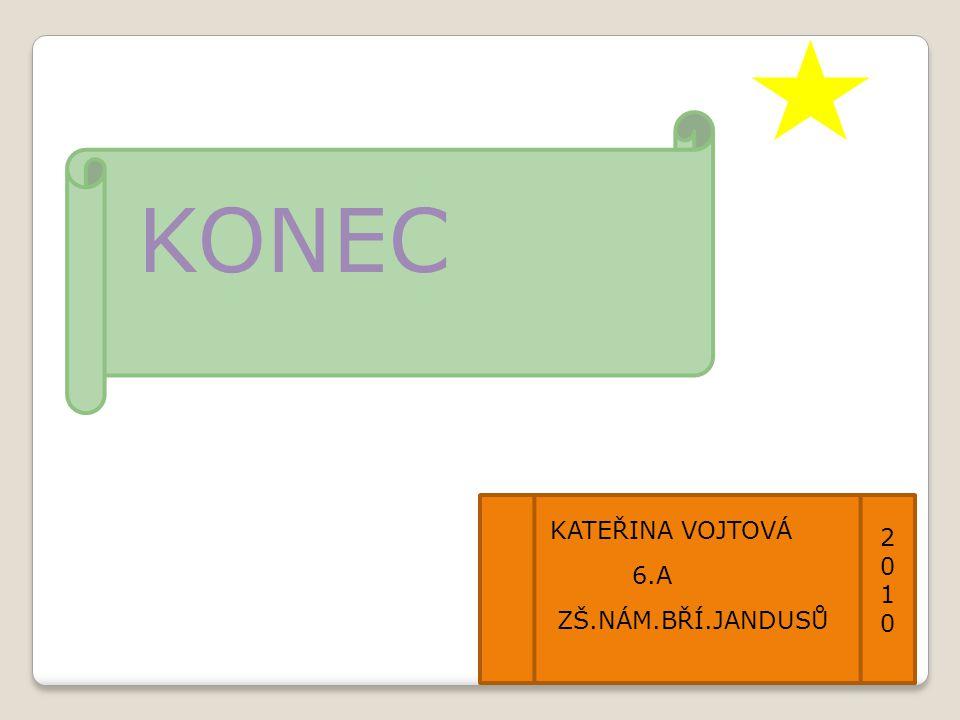 KONEC KATEŘINA VOJTOVÁ 20102010 6.A ZŠ.NÁM.BŘÍ.JANDUSŮ