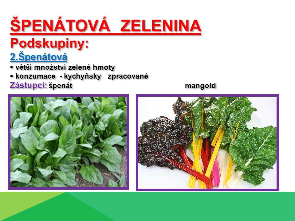 Špenát zelný ( Spinacia oleracea L.