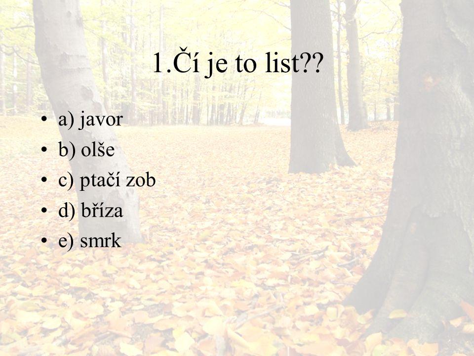 1.Čí je to list?? a) javor b) olše c) ptačí zob d) bříza e) smrk