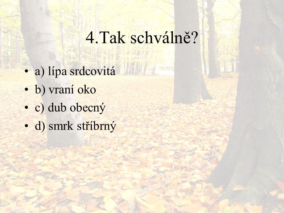 4.Tak schválně? a) lípa srdcovitá b) vraní oko c) dub obecný d) smrk stříbrný