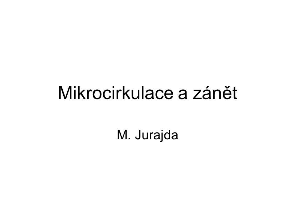 Mikrocirkulace a zánět M. Jurajda