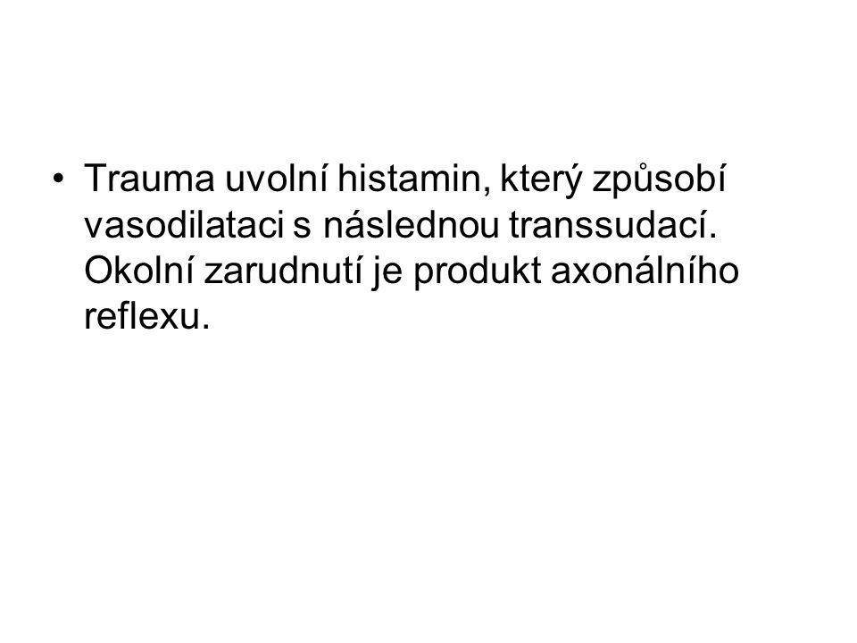 Trauma uvolní histamin, který způsobí vasodilataci s následnou transsudací. Okolní zarudnutí je produkt axonálního reflexu.