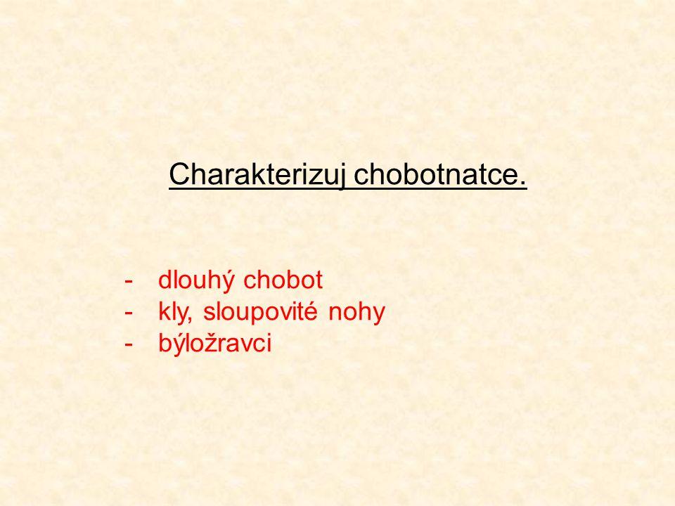 Charakterizuj chobotnatce. -dlouhý chobot -kly, sloupovité nohy -býložravci