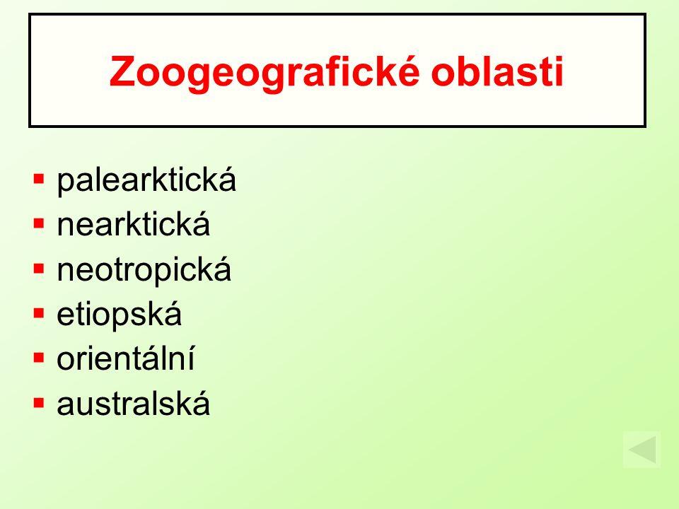  palearktická  nearktická  neotropická  etiopská  orientální  australská Zoogeografické oblasti