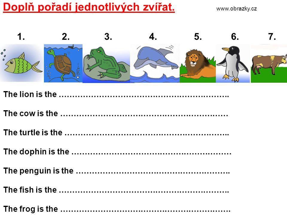 Dle textu sestav řadu zvířat.The bear is the first.