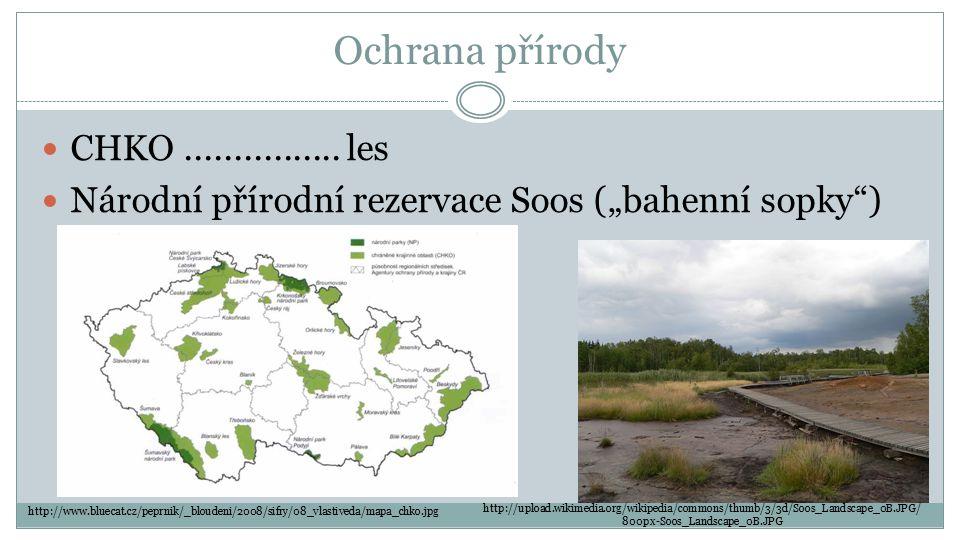"""Ochrana přírody CHKO................ les Národní přírodní rezervace Soos (""""bahenní sopky"""") http://upload.wikimedia.org/wikipedia/commons/thumb/3/3d/So"""