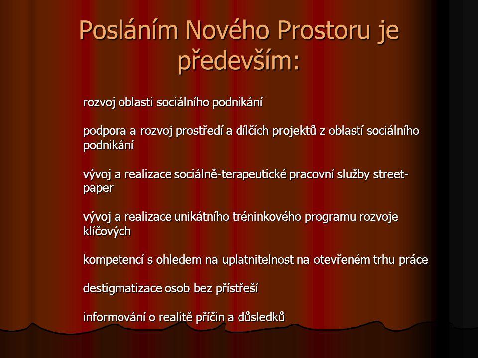 Posláním Nového Prostoru je především: rozvoj oblasti sociálního podnikání podpora a rozvoj prostředí a dílčích projektů z oblastí sociálního podnikán