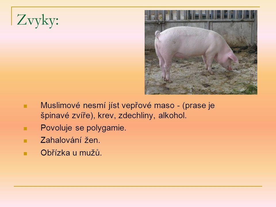 Zvyky: Muslimové nesmí jíst vepřové maso - (prase je špinavé zvíře), krev, zdechliny, alkohol.