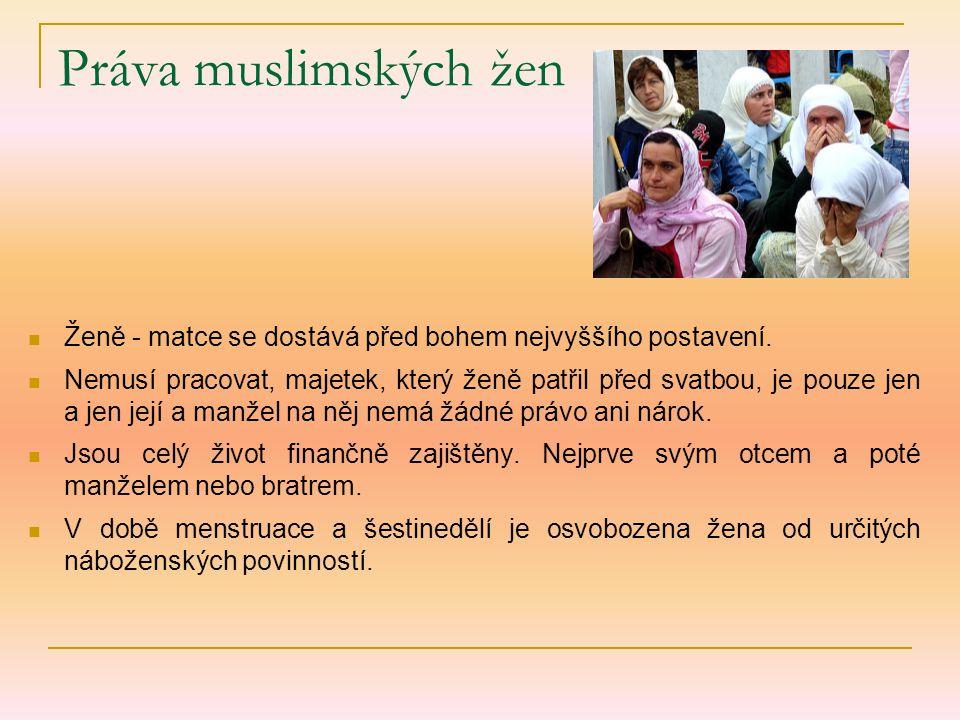 Práva muslimských žen Ženě - matce se dostává před bohem nejvyššího postavení. Nemusí pracovat, majetek, který ženě patřil před svatbou, je pouze jen