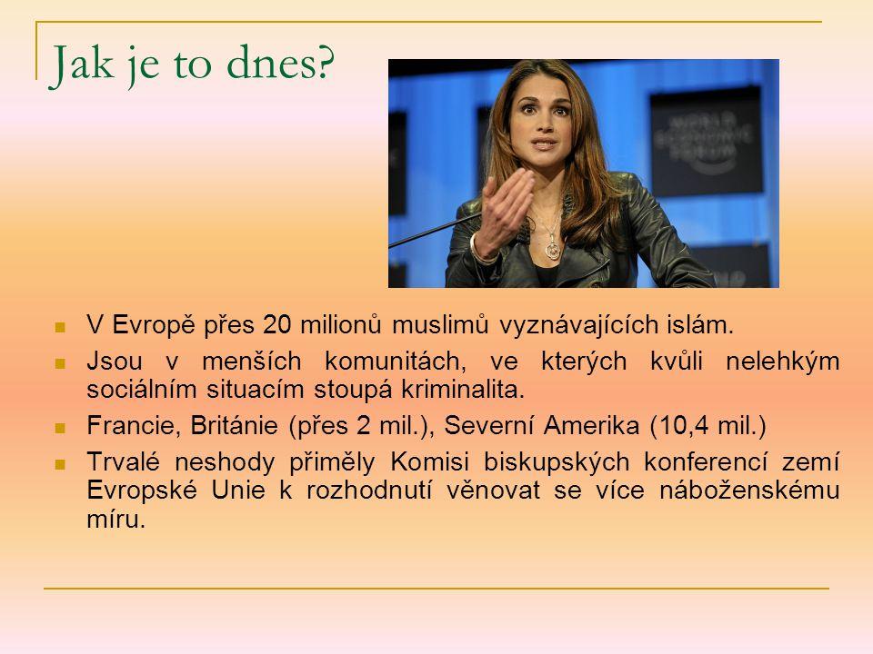 Jak je to dnes? V Evropě přes 20 milionů muslimů vyznávajících islám. Jsou v menších komunitách, ve kterých kvůli nelehkým sociálním situacím stoupá k