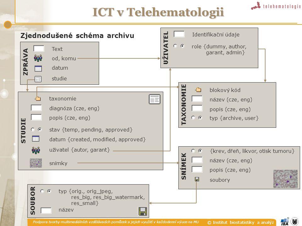 Podpora tvorby multimediálních vzdělávacích pomůcek a jejich využití v každodenní výuce na MU © Institut biostatistiky a analýz ICT v Telehematologii