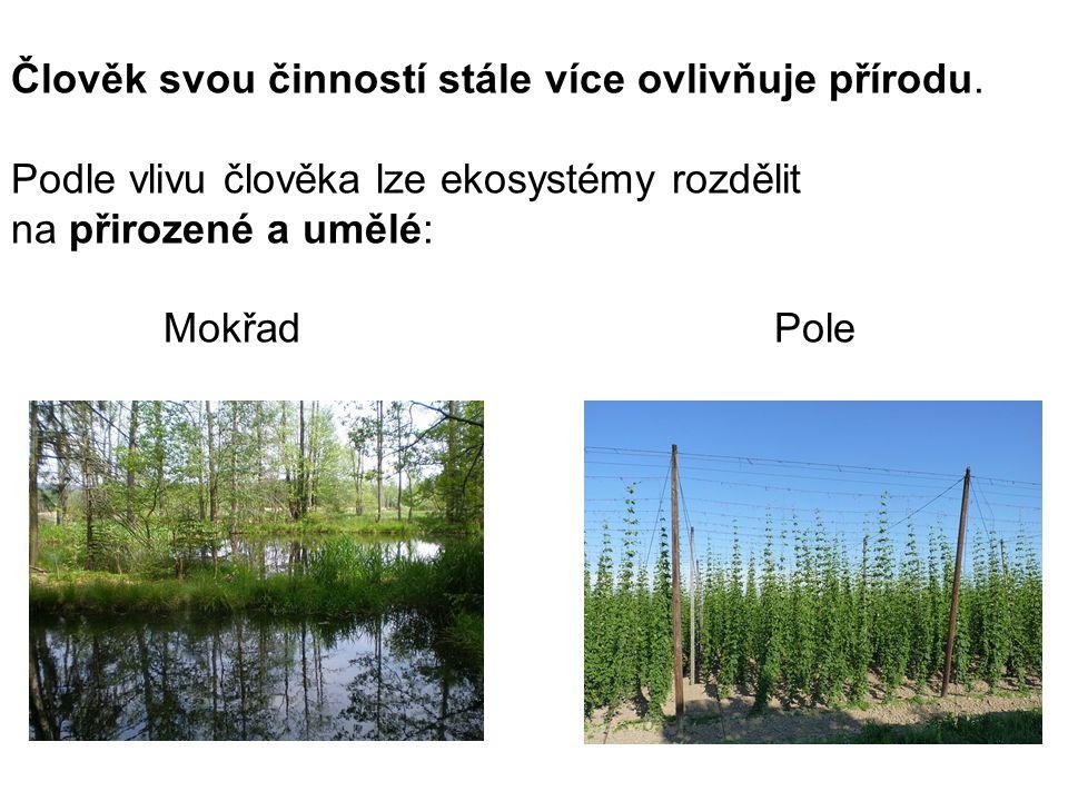 Člověk svou činností stále více ovlivňuje přírodu. Podle vlivu člověka lze ekosystémy rozdělit na přirozené a umělé: Mokřad Pole