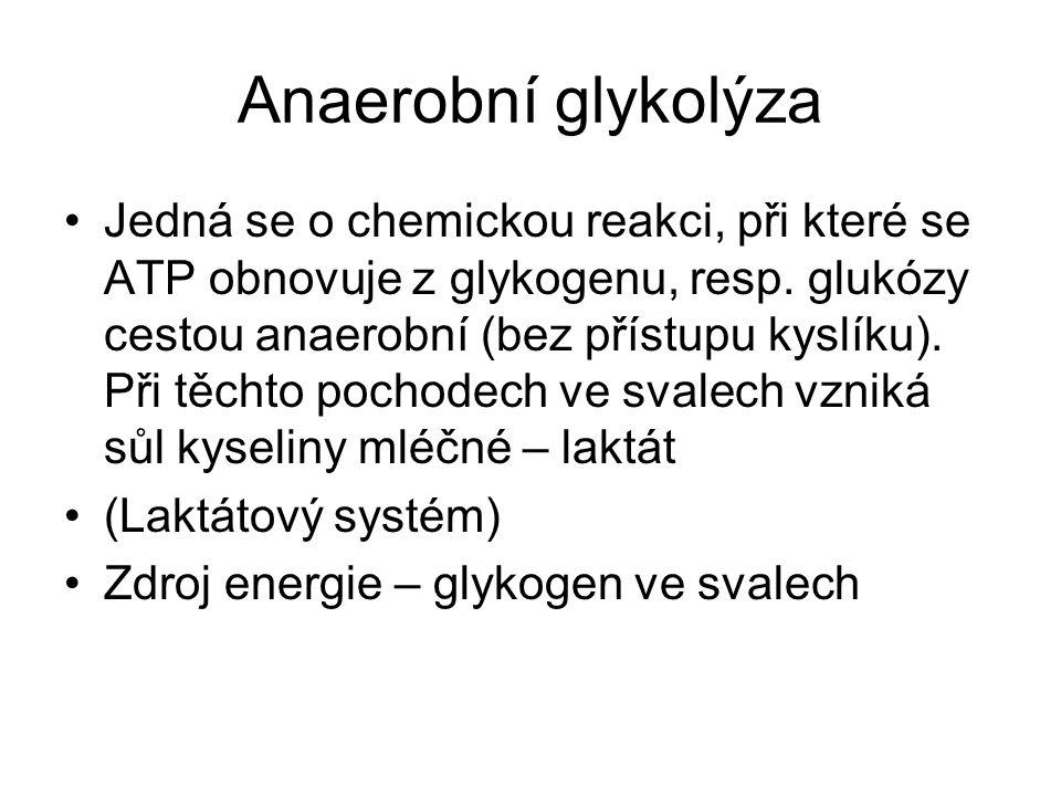 3) Oxidativní fosforylace (= oxidativní systém) Vytrvalostní zatížení střední 2 – 11 min využívá především glycidy se střední tvorbou laktátu Dlouhé vytrvalostní zatížení 11 – 60 min využívá glycidy a lipidy, tvorba laktátu je malá.