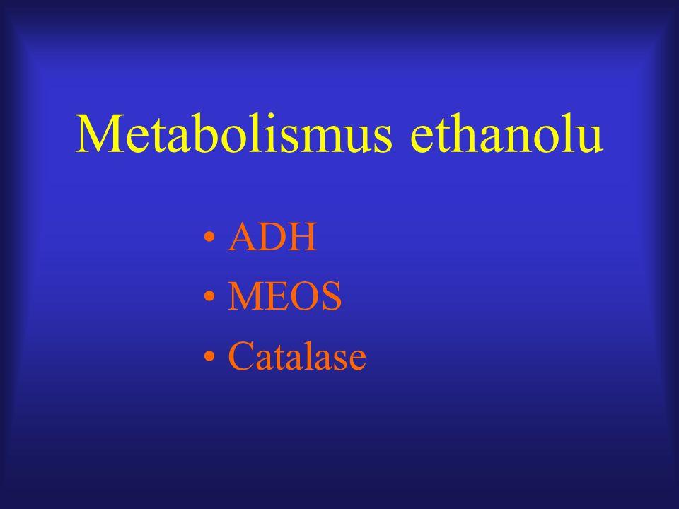 Metabolismus ethanolu ADH MEOS Catalase