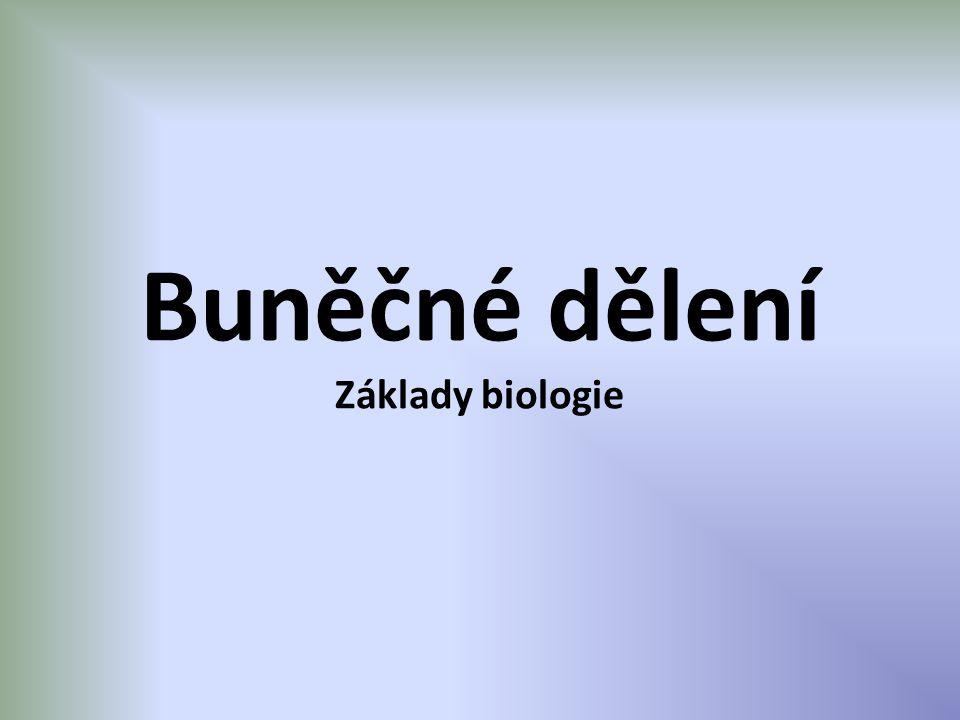 Buněčné dělení Základy biologie