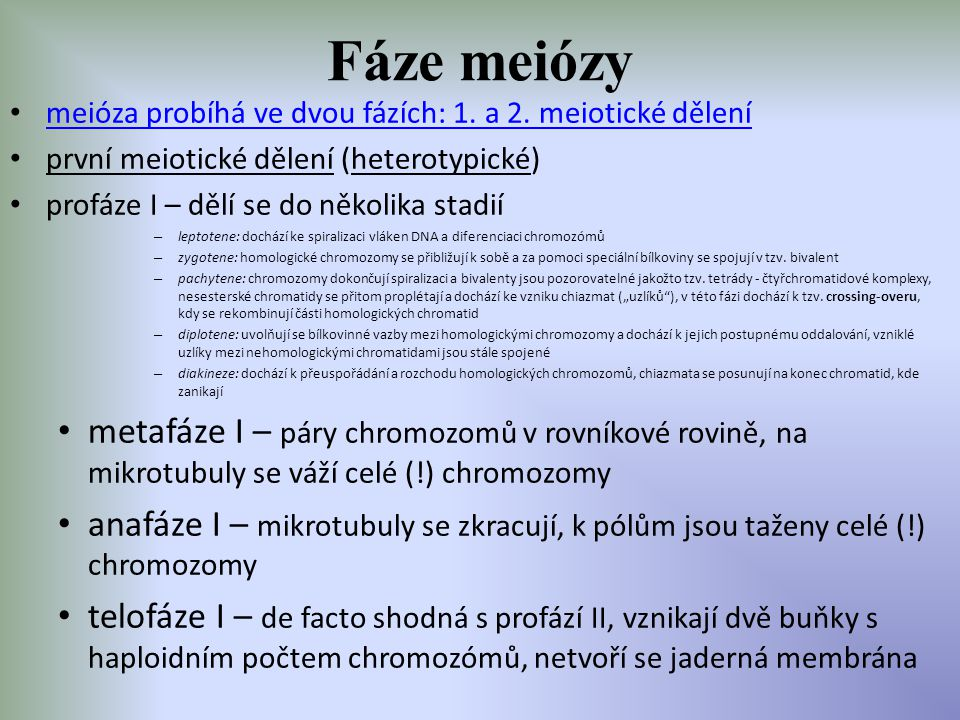 Fáze meiózy meióza probíhá ve dvou fázích: 1. a 2. meiotické dělení první meiotické dělení (heterotypické) profáze I – dělí se do několika stadií – le