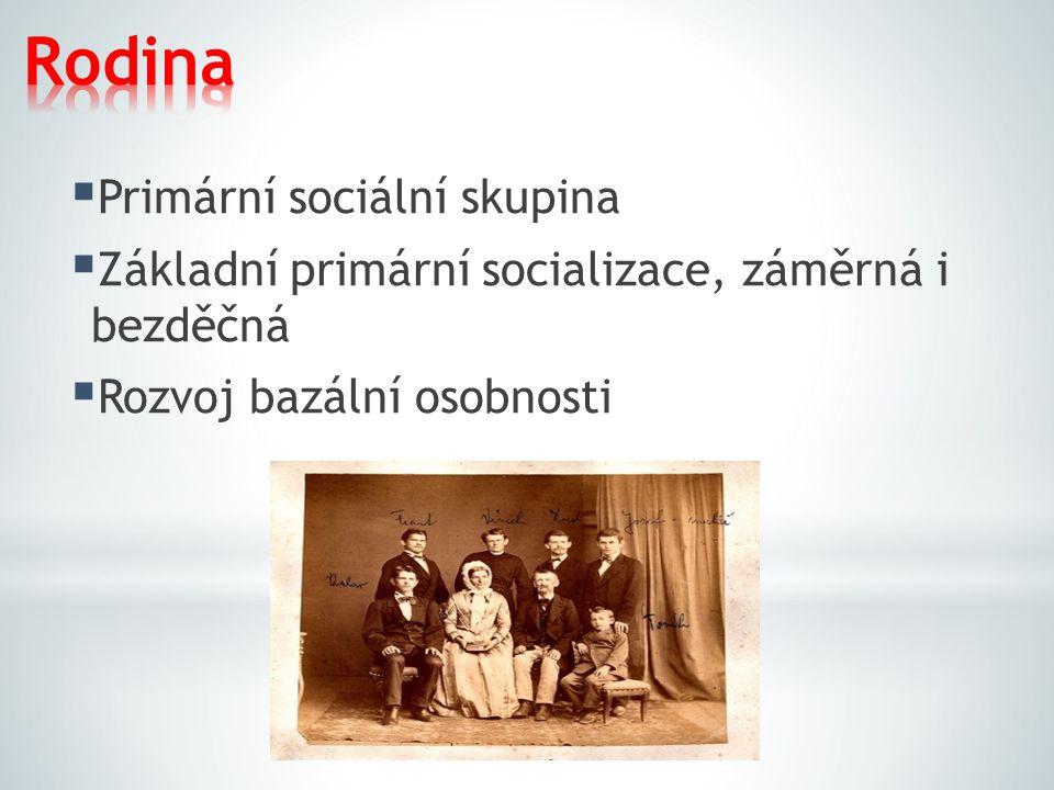  Primární sociální skupina  Základní primární socializace, záměrná i bezděčná  Rozvoj bazální osobnosti