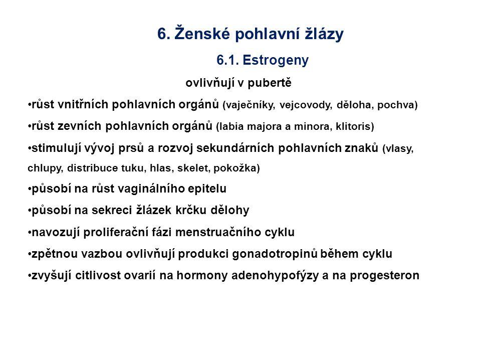 6. Ženské pohlavní žlázy 6.1. Estrogeny ovlivňují v pubertě růst vnitřních pohlavních orgánů (vaječníky, vejcovody, děloha, pochva) růst zevních pohla