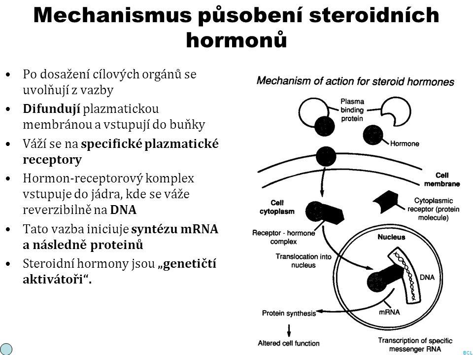 Mechanismus působení steroidních hormonů Po dosažení cílových orgánů se uvolňují z vazby Difundují plazmatickou membránou a vstupují do buňky Váží se