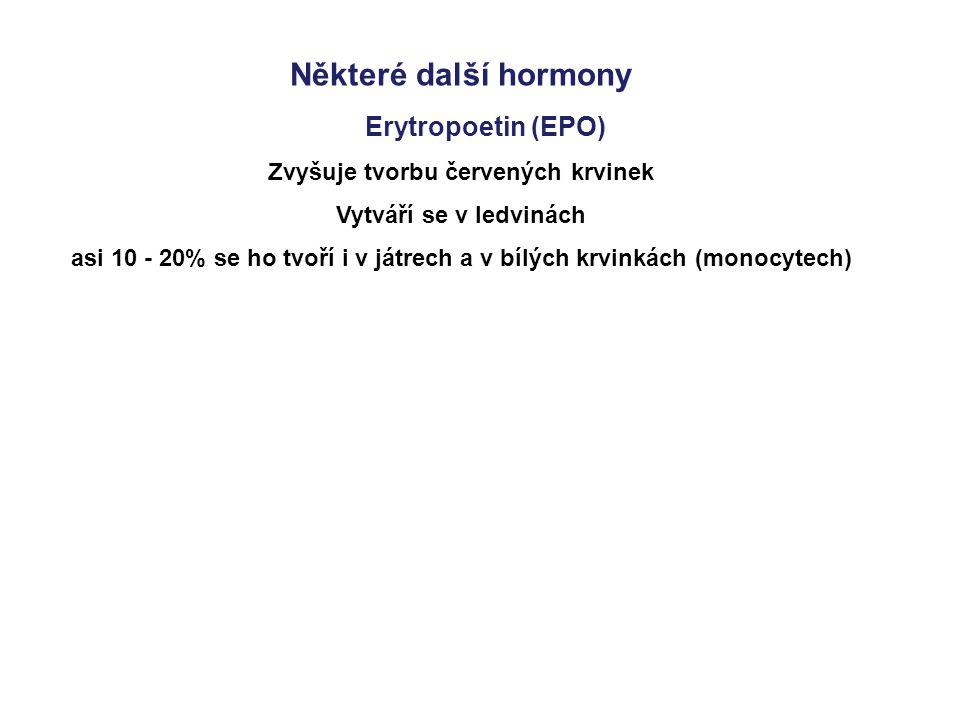 Některé další hormony Erytropoetin (EPO) Zvyšuje tvorbu červených krvinek Vytváří se v ledvinách asi 10 - 20% se ho tvoří i v játrech a v bílých krvin