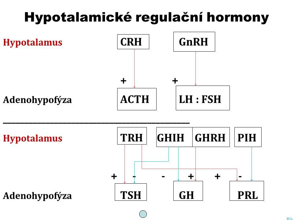 Hypotalamické regulační hormony Hypotalamus CRHGnRH + Adenohypofýza ACTHLH : FSH ____________________________________________ Hypotalamus TRH GHIH GHR