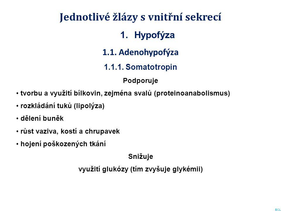 Jednotlivé žlázy s vnitřní sekrecí 1.Hypofýza 1.1. Adenohypofýza 1.1.1. Somatotropin Podporuje tvorbu a využití bílkovin, zejména svalů (proteinoanabo