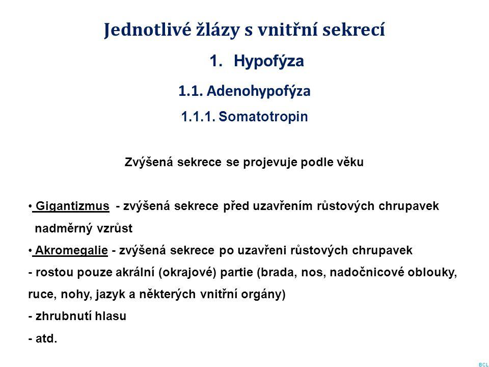 Jednotlivé žlázy s vnitřní sekrecí 1.Hypofýza 1.1. Adenohypofýza 1.1.1. Somatotropin Zvýšená sekrece se projevuje podle věku Gigantizmus - zvýšená sek