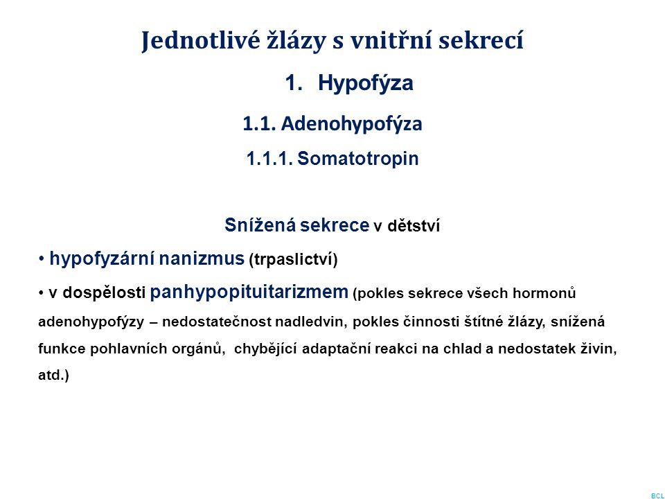 Jednotlivé žlázy s vnitřní sekrecí 1.Hypofýza 1.1. Adenohypofýza 1.1.1. Somatotropin Snížená sekrece v dětství hypofyzární nanizmus (trpaslictví) v do