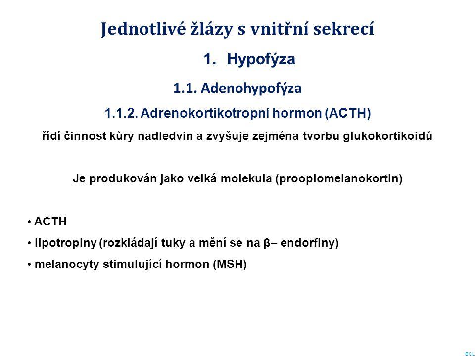 Jednotlivé žlázy s vnitřní sekrecí 1.Hypofýza 1.1. Adenohypofýza 1.1.2. Adrenokortikotropní hormon (ACTH) řídí činnost kůry nadledvin a zvyšuje zejmén