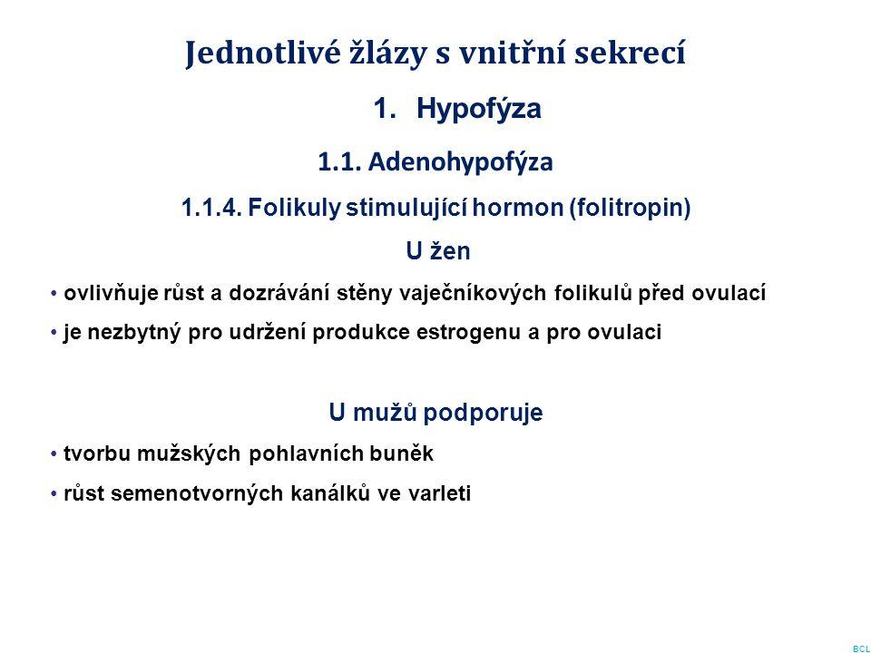 Jednotlivé žlázy s vnitřní sekrecí 1.Hypofýza 1.1. Adenohypofýza 1.1.4. Folikuly stimulující hormon (folitropin) U žen ovlivňuje růst a dozrávání stěn