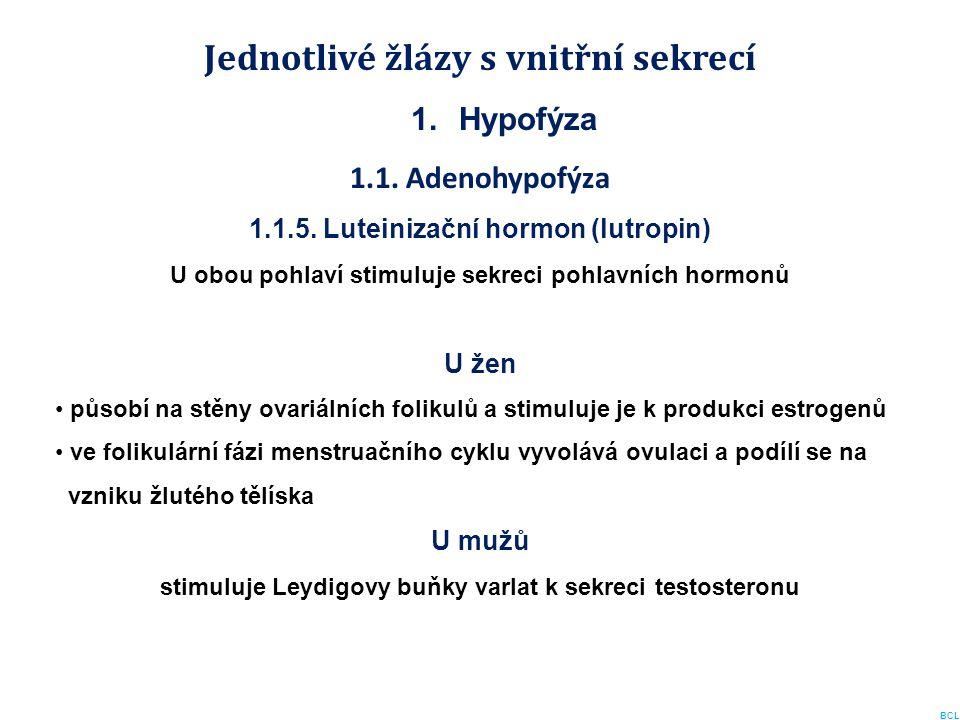 Jednotlivé žlázy s vnitřní sekrecí 1.Hypofýza 1.1. Adenohypofýza 1.1.5. Luteinizační hormon (lutropin) U obou pohlaví stimuluje sekreci pohlavních hor