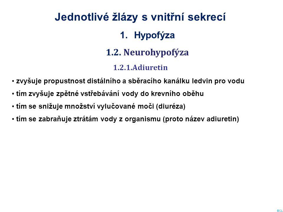 Jednotlivé žlázy s vnitřní sekrecí 1.Hypofýza 1.2. Neurohypofýza 1.2.1.Adiuretin zvyšuje propustnost distálního a sběracího kanálku ledvin pro vodu tí