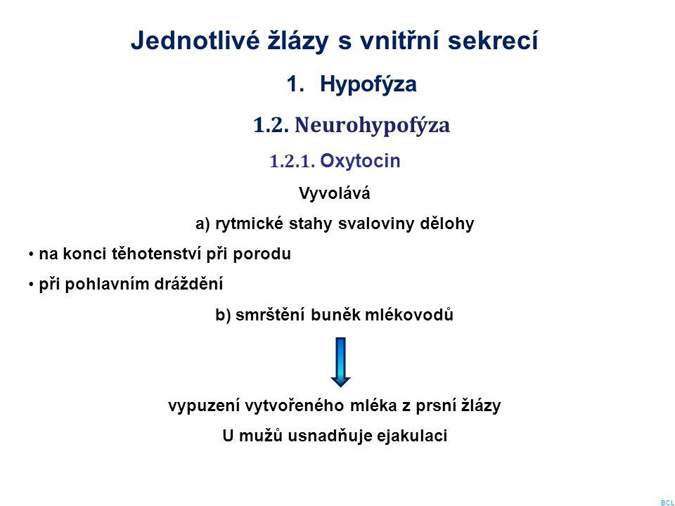 Jednotlivé žlázy s vnitřní sekrecí 1.Hypofýza 1.2. Neurohypofýza 1.2.1. Oxytocin Vyvolává a) rytmické stahy svaloviny dělohy na konci těhotenství při