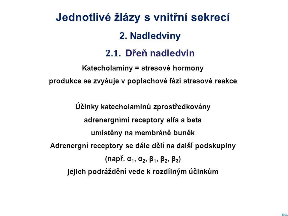 Jednotlivé žlázy s vnitřní sekrecí 2. Nadledviny 2.1. Dřeň nadledvin Katecholaminy = stresové hormony produkce se zvyšuje v poplachové fázi stresové r