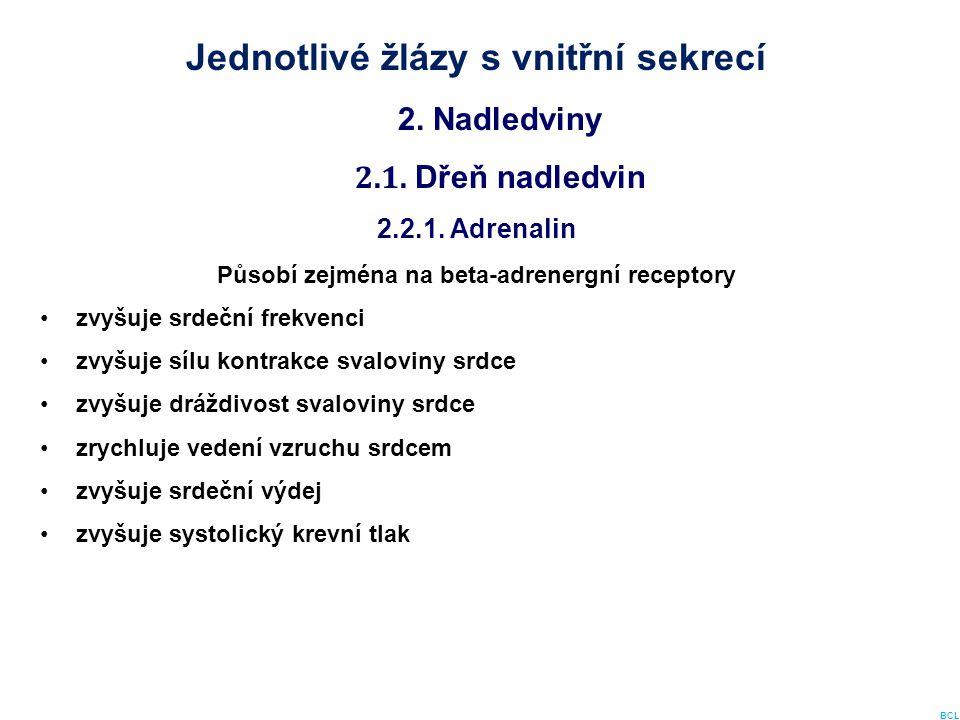 Jednotlivé žlázy s vnitřní sekrecí 2. Nadledviny 2.1. Dřeň nadledvin 2.2.1. Adrenalin Působí zejména na beta-adrenergní receptory zvyšuje srdeční frek
