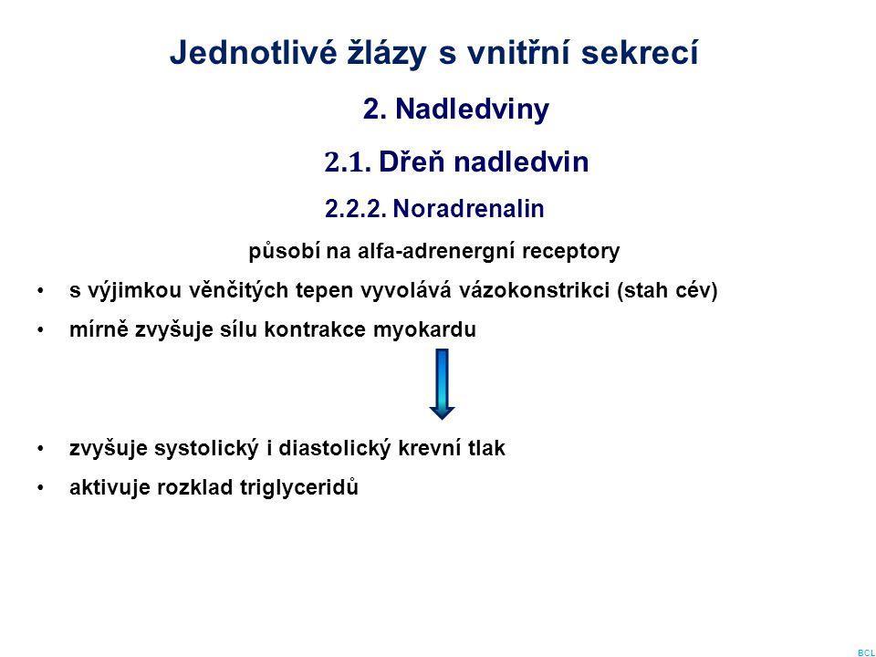Jednotlivé žlázy s vnitřní sekrecí 2. Nadledviny 2.1. Dřeň nadledvin 2.2.2. Noradrenalin působí na alfa-adrenergní receptory s výjimkou věnčitých tepe