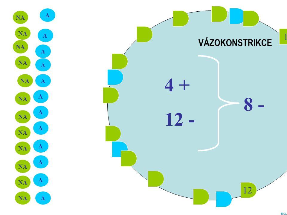 12 1 A NA A A A A A A A A A A A 4 + 12 - 8 - VÁZOKONSTRIKCE BCL