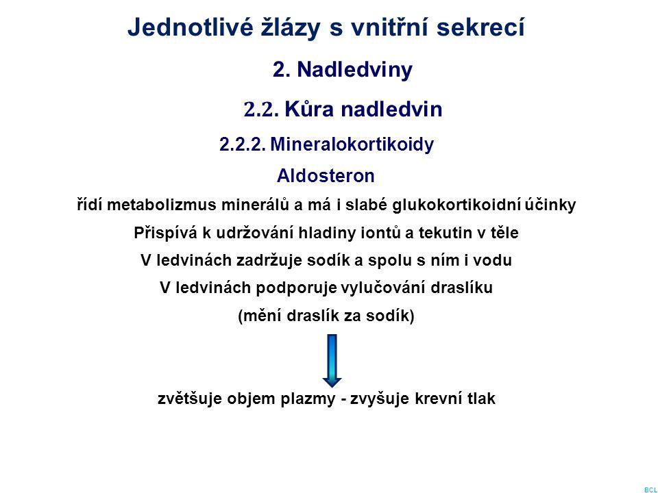 Jednotlivé žlázy s vnitřní sekrecí 2. Nadledviny 2.2. Kůra nadledvin 2.2.2. Mineralokortikoidy Aldosteron řídí metabolizmus minerálů a má i slabé gluk